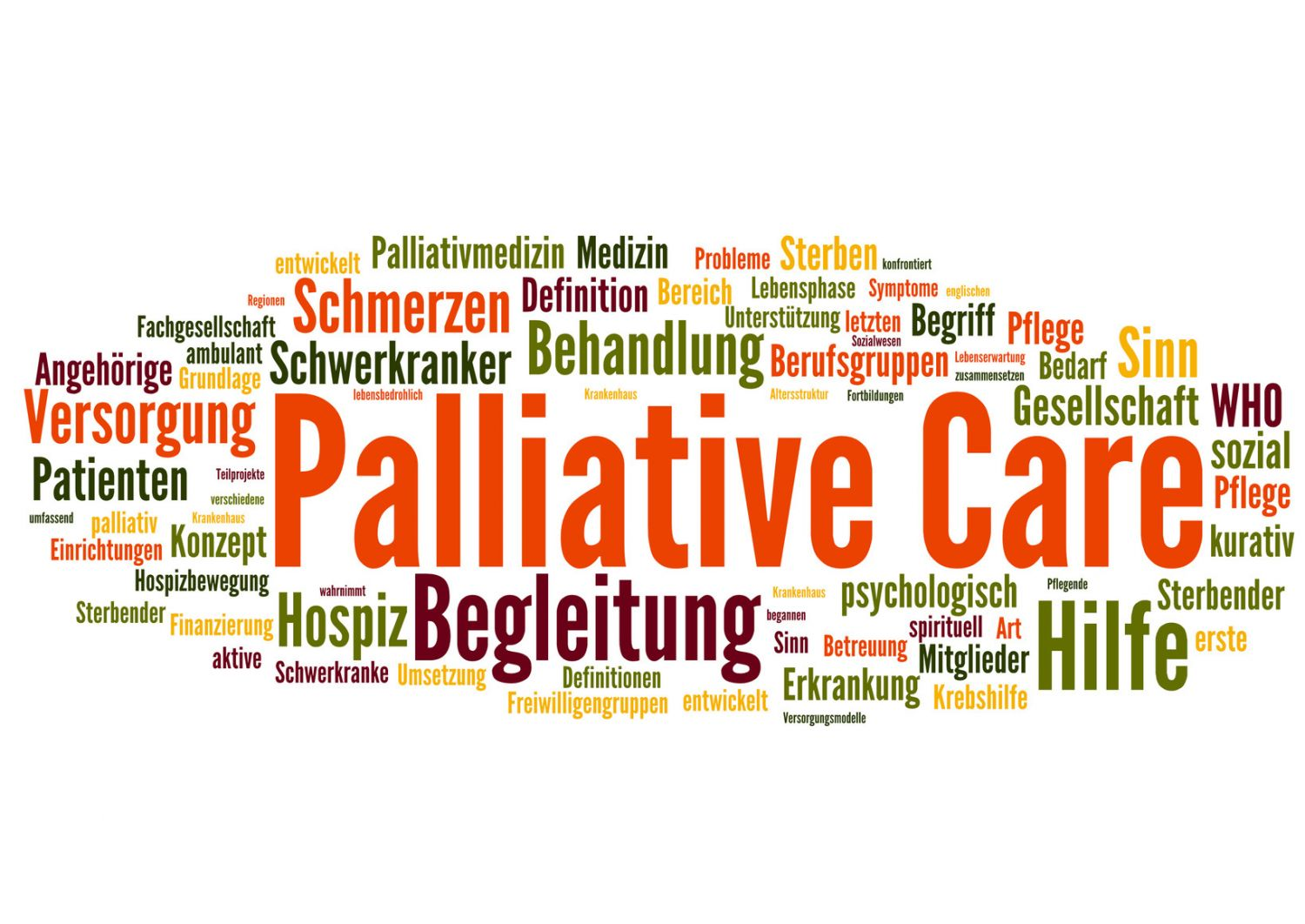 how to become a palliative care physician
